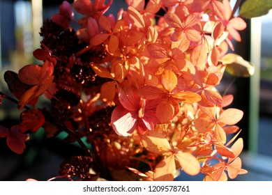 Beautiful bouquet with autumn foliage in a flower vase on a garden table, Allgäu, Bavaria