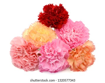 Beautiful bouquet of carnation flowers isolated on white background