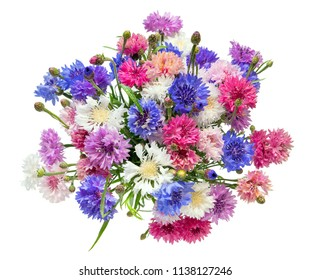 A beautiful bouquet of colorful cornflowers isolated on a white background.