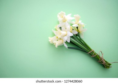 A beautiful bouquet of daffodils lies on a light green background, with copy space