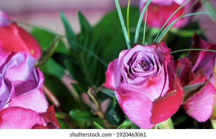 a beautiful bouquet of fresh pink roses
