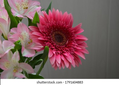 Beautiful bouquet with gerberas. Fresh large pink flowers
