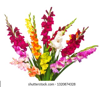 Beautiful bouquet of multicolored gladiolus flowers isolated on white background. Yellow, red, orange, green