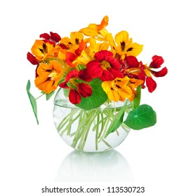 beautiful bouquet of nasturtium flowers in a vase