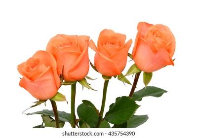 beautiful Bouquet of orange rose flowers isolated on white background