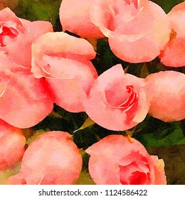 A Beautiful Bouquet Of Pink Roses