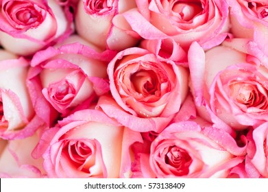 A beautiful bouquet of pink roses and sweet for Valentine's Day.