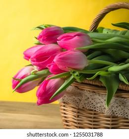 Beautiful bouquet of pink tulips in a wicker basket
