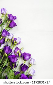 Beautiful Bouquet of Purple Eustoma flowers, Lisianthus, light background.  Top view, copy space, flat lay