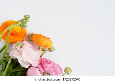 Beautiful bouquet of ranunculus flowers of orange and pink color on a white background. Spring flowers and buds. Copy space for text