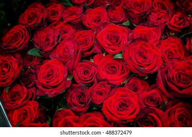 beautiful bouquet of red roses to your loved ones holidays, birthday, Valentine's Day, wedding