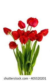 Beautiful bouquet of red  tulips isolated on white background
