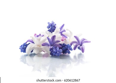 Purple flowers white background images stock photos vectors beautiful bouquet of spring flowers on a white background mightylinksfo
