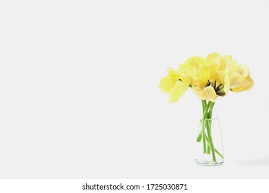 beautiful bouquet of spring flowers in a vase. yellow tulip, copy space.