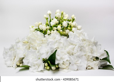 Beautiful bouquet of white Gardenia jasminoides flower or Cape Jasmine with bud, isolated on a white background.