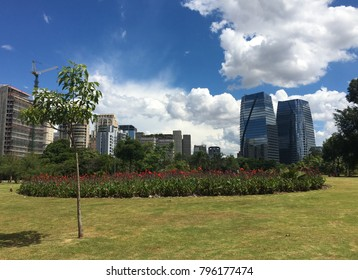 Beautiful Brazilian park with buildings behind.