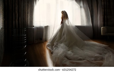 Beautiful Bride boudoir Portrait wedding makeup and hairstyle, girl in veil and jewelry at home. Bride wedding morning. Fashion bride gorgeous beauty, smiling happy bride woman with marriage flowers.