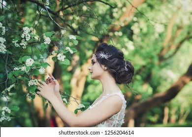 Beautiful bride in fashion wedding dress on natural background. Wedding day.