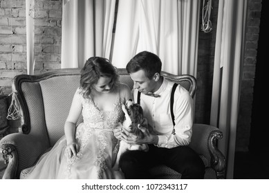 A beautiful bride and groom are hugging a dog sitting on a sofa. Black and white photography.