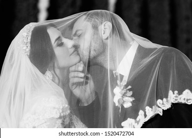 Beautiful bride and groom smiling emotionally under the veil. Happy wedding couple hugging. Bride and groom covered with veil close-up. Happy bride and groom on their wedding day. Black and white