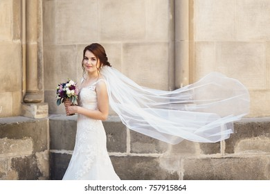 beautiful bride portrait with the veil in the air
