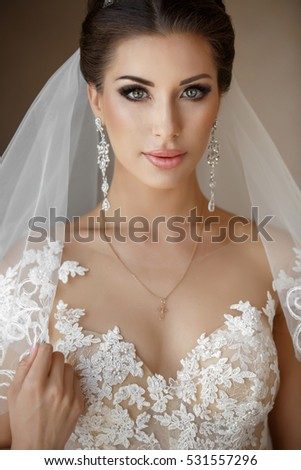 Beautiful Bride Portrait Wedding Makeup Hairstyle Stock Photo Edit