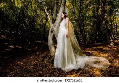 beautiful bride in wedding dress in amazing autumn landscape