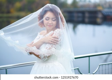 beautiful bride in a wedding dress, a gentle touch of hands, covered with a veil