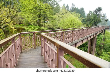 Beautiful bridge in the national park Alishan Taiwan