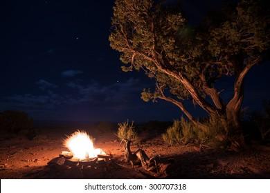 Beautiful Bright Starry Night Single Tree Utah desert Bonfire