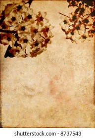 beautiful brown background image with interesting texture, floral elements and plenty of space for text