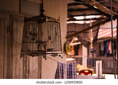 The beautiful brown carved birdcage with lapwing on a patchy background
