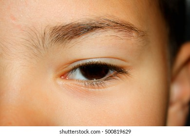 Beautiful brown eye on male child - macro shot.