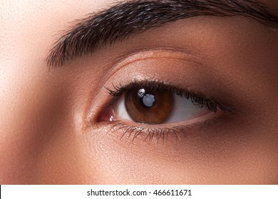 Beautiful brown eyes and neat eyebrows. Long black lashes, eyes like gimlets