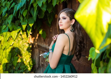 Beautiful brunette girl in glamorous green dress and with beautiful silver earrings in front of the wooden door, gate. Ready for prom night