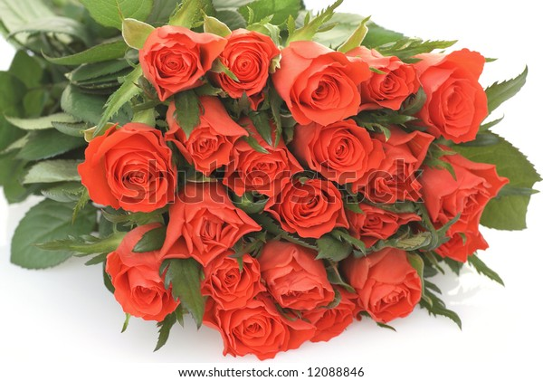 Beautiful bunch of roses on white.