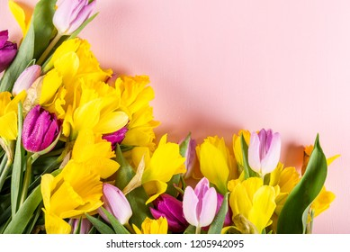 Beautiful Bunch of Tulips and yellow Daffodils on the Pink Background, spring holiday concept, copy space