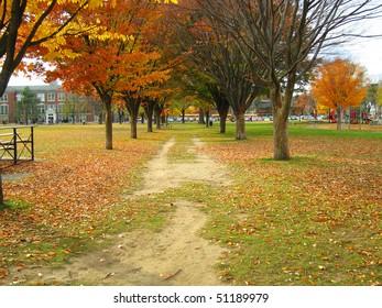 The beautiful Burns Park neighborhood and school, an affluent area of Ann Arbor, Michigan