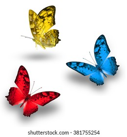 Beautiful butterfly, Blue ,Red and Yellow butterfly flying up.