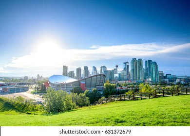 Beautiful Calgary city skyline from scotsman's hill on a sunny day, Canada