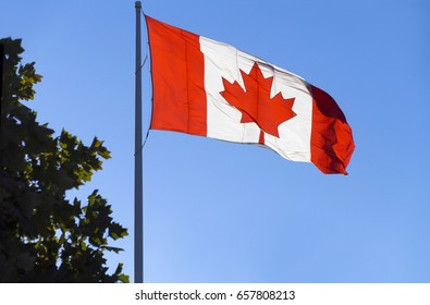 Beautiful Canada flag is waving in the sky