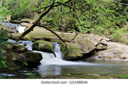 Beautiful capture of Millstone River cascading down the rocky hillside creating beautiful tiny falls on the way out to the ocean, all part of Bowen Park in Nanaimo on Vancouver Island, BC, Canada.