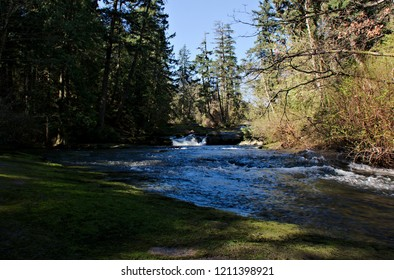 Beautiful capture of Millstone River running through Bowen Park on a sunny  morning, one of many gorgeous parks located within the city limits of Nanaimo on Vancouver Island, BC, Canada.