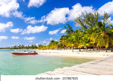 Beautiful caribbean beach on Saona island, Dominican Republic