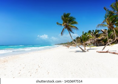The beautiful caribbean beach of Tulum, Quintana Roo, Mexico, with coconut palm trees and turquoise ocean