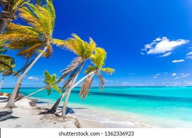 Beautiful Caribbean Shoal Bay East beach in Anguilla island