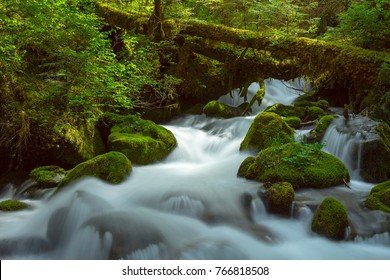 A beautiful cascade in the Fraser Valley's lush rain forests BC Canada