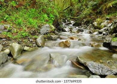 Beautiful cascade water falls at Hoh Rainforest,  National Park, Washington USA.