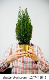Beautiful casual dressed woman hiding her face behind freen fir tree in golden pot deadpan style - horizontal photo