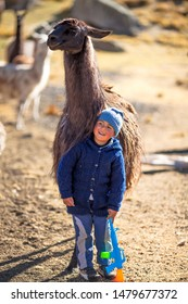 Beautiful child of the Andes of Peru, plays with his lamas and his toy. June 12, 2017, Huayllay Peru